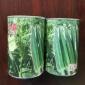 日本水果秋葵种子_爱木绿灞秋葵种子_五角形座果率高秋葵种子供应
